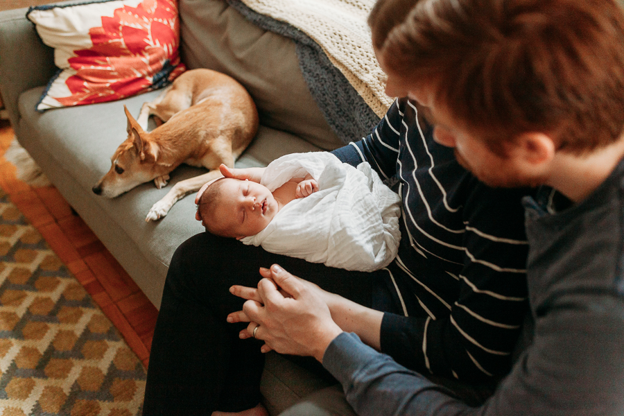 family with dog on couch during newborn photography sessionmanhattan maternity photographer charis elisabeth 8246